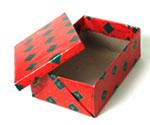 NativeVML - Responsible: Santa Shoe Box - Full Service Digital